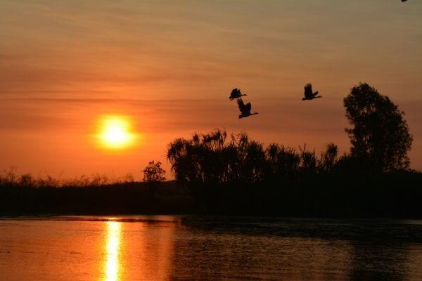 Arnhemland